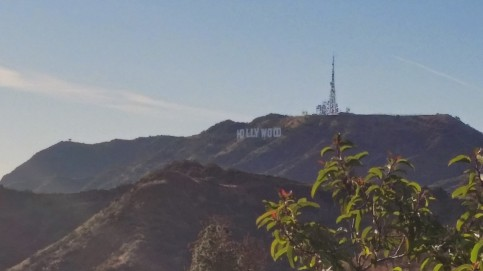 Oh hi, Hollywood.